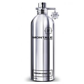 Montale Paris Embruns d'Essaouira Eau De Parfum 100 ml